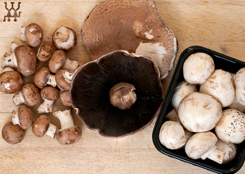 how to tell when mushrooms have gone bad