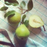 a trio of pears