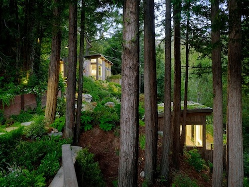 Mill Valley Cabin