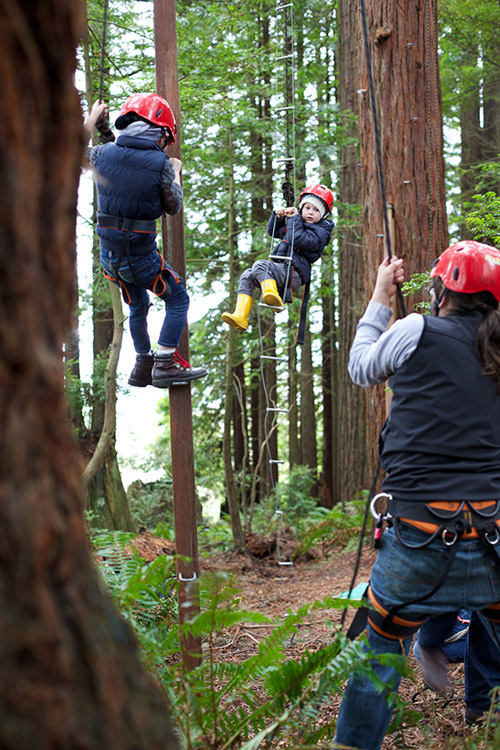 Climbing in the Redwoods