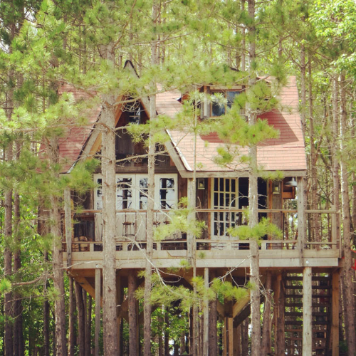 Living Wood Tree House Living With Kids Lynne Knowlton Design Mom