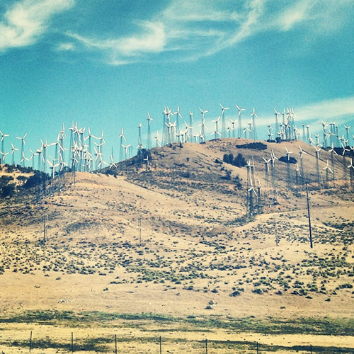 wind farm in california