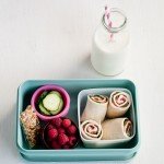 turkey wrap with berries and cucumbers