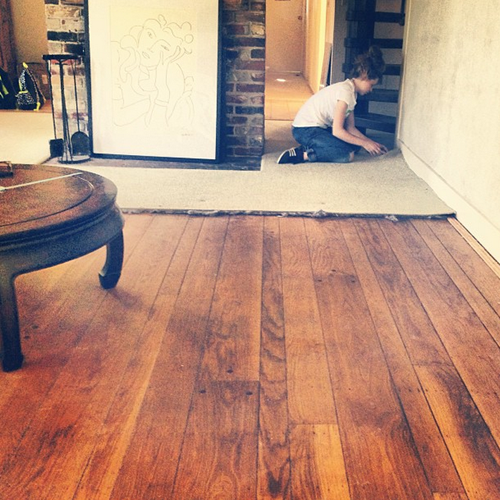 wood floors revealed
