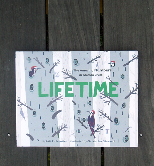 Lifetime by Lola M. Schaefer and Christopher Silas Neal