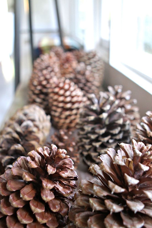 Oversize pinecones. From The Treehouse Living Room Tour.  |  Design Mom