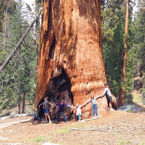 Blairs at Sequoia National Park