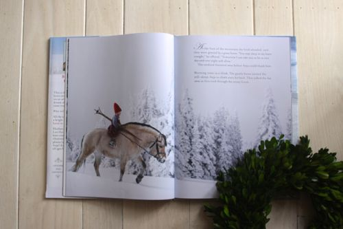 A Christmas Wish — plus 32 other Wonderful Holiday Books