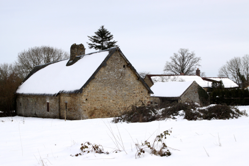 The Cottage Snow09