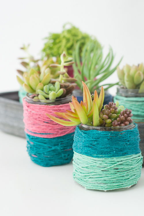 Block-Color Wrapped Jar Pots for Succulents | Design Mom