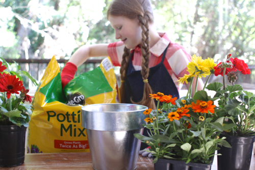 miracle-gro-potting-mix09