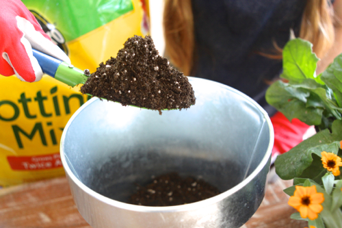 miracle-gro-potting-mix10