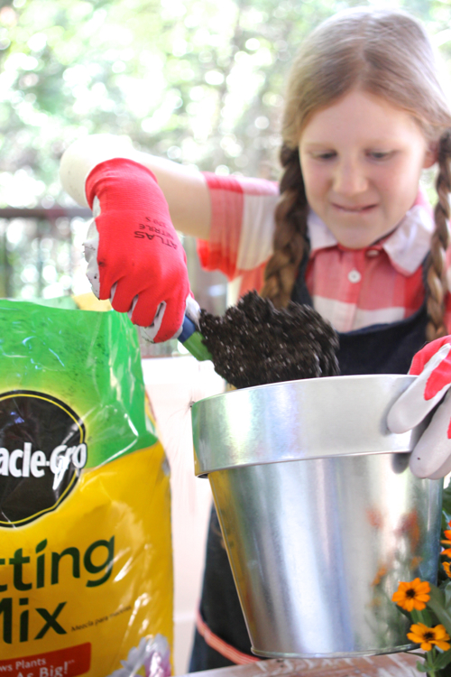 miracle-gro-potting-mix11