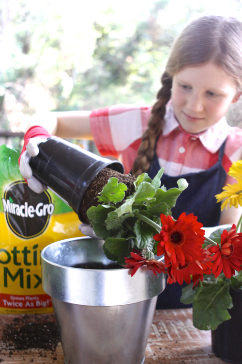 miracle-gro-potting-mix14