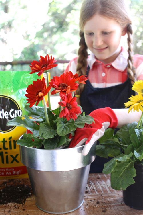 miracle-gro-potting-mix16