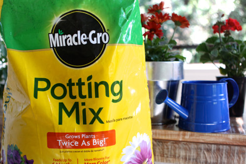 miracle-gro-potting-mix24