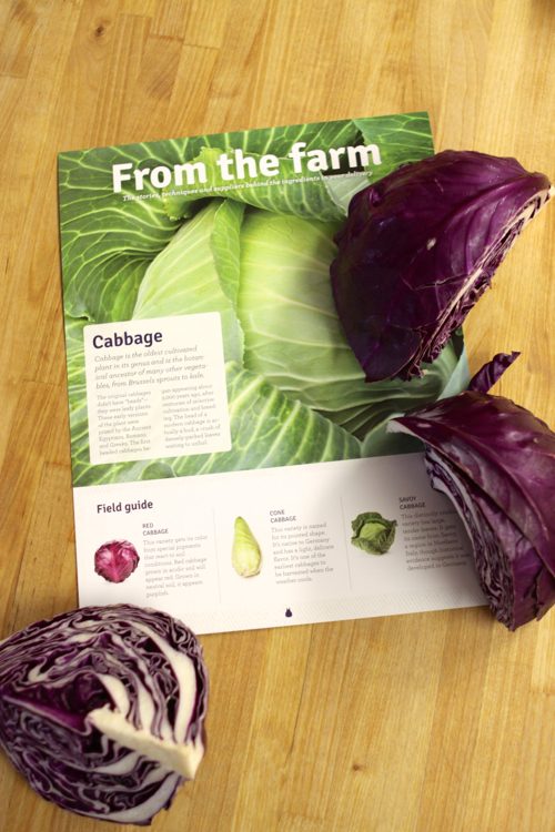 blue-apron-purple-cabbage04