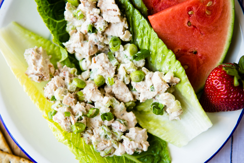 Chicken Salad with Blue Diamond Almonds-39