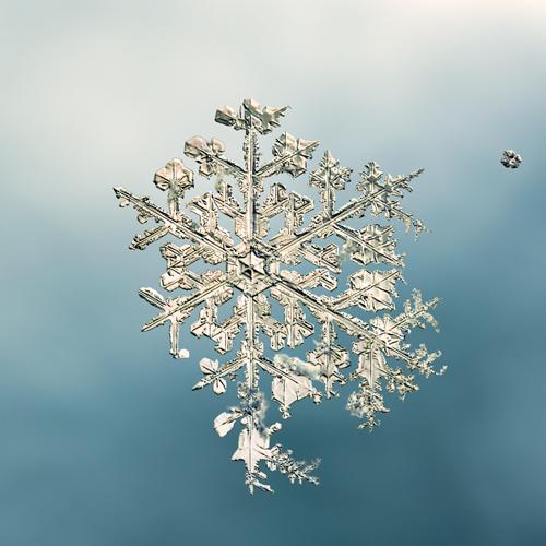 snowflake mike doug starn 20x200