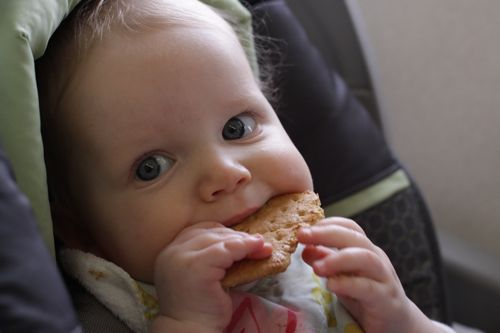 baby with cracker on airplane