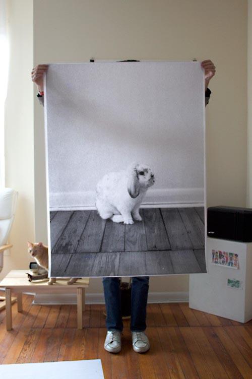 oversize photo prints Debbie Carlos