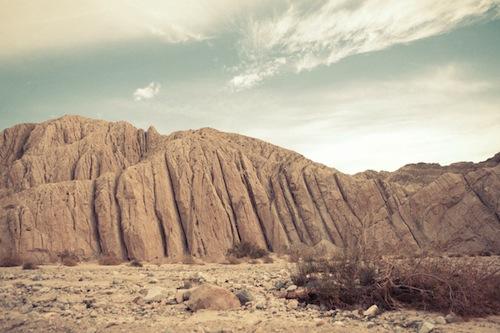 Douglas L. Thompson Desert Landscape