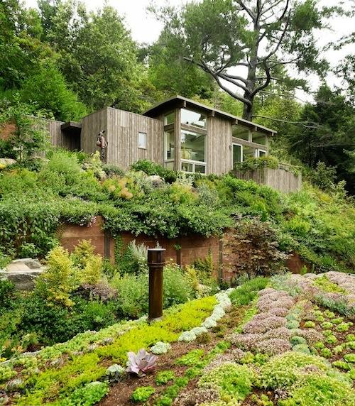 Mill Valley Cabin