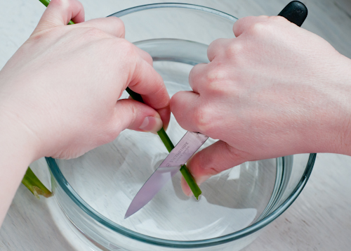 10 Secrets For Keeping Cut Flowers Fresh featured on top lifestyle blog, Design Mom