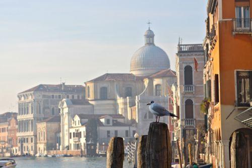 Venice | Design Mom19