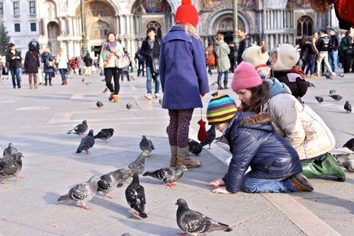 Venice | Design Mom_40