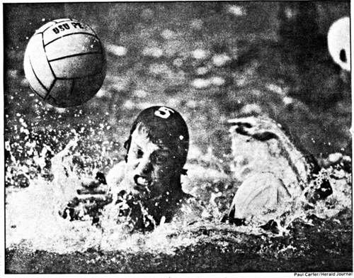 Dell Water Polo