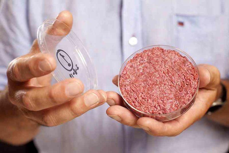 engineered meat