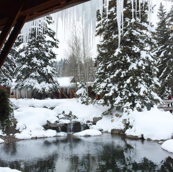 Snowy scene at Sundance Resort