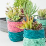 Block-Color Wrapped Jar Pots for Succulents | Design Mom